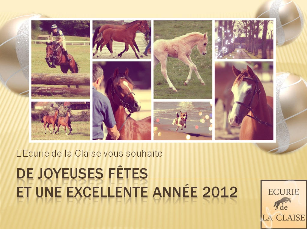 JOYEUSES FÊTES ET BONNE ANNEE 2012
