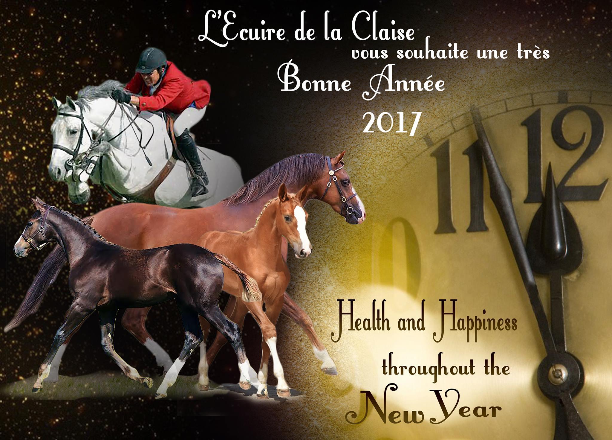 Bonne et Heureuse Nouvelle Année!!!