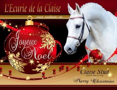 L'Ecurie de la Claise vous souhaite un Joyeux Noel .