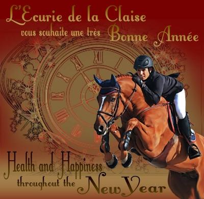 L'Ecurie de la Claise vous souhaite une excellente année 2018. Nous espérons le meilleur pour chacun d'entre vous et vos chevaux : Naissances, Victoires, Santé et plein de Bonheur !