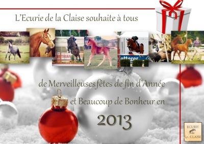 JOYEUSES FETE ET BONNE ANNEE 2013 !!!