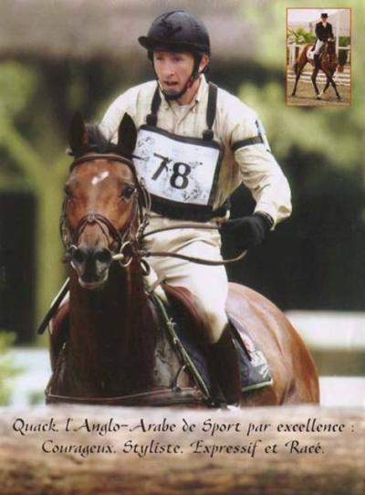 QUACK *AA*  peut à nouveau produire en Selle Français.