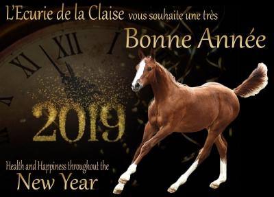 L'Ecurie de la Claise vous souhaite une excellente année 2019. Nous espérons le meilleur pour chacun d'entre vous et vos chevaux : Naissances, Victoires, Santé et plein de Bonheur !