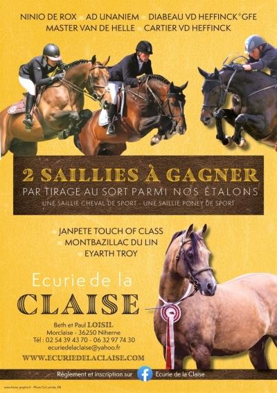 TIRAGE au SORT* 2 SAILLIES GRATUITE*   Règlement et Inscription sur la page Facebook Ecurie de la Claise!!!