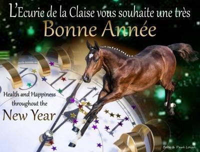 L'Ecurie de la Claise vous souhaite une excellente année 2020. Nous espérons le meilleur pour chacun d'entre vous et vos chevaux : Naissances, Victoires, Santé et plein de Bonheur !