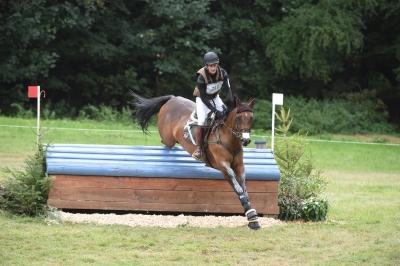 Beaune d'Epte par Quack *AA* née chez Laurianne De Sutter qualifié pour le championnat de France des 7 ans CCE ainsi que Le Mondial du Lion d'Angers . Bravo!
