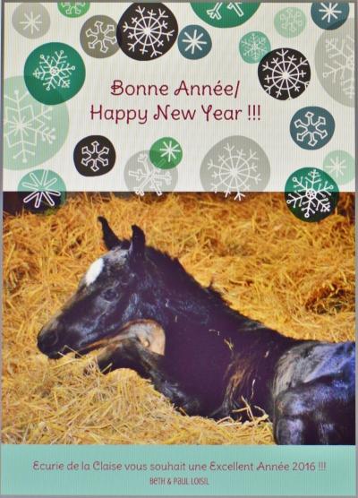 Ecurie de la Claise vous souhaite une Bonne et Heureuse Nouvelle Année !!!
