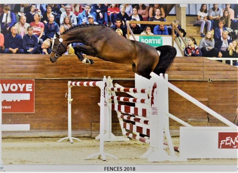 <b>Key to Success par Diabeau/ PSV Photos</b>